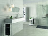 Picture of Windsor Grey Polished Tile 25x60 cm