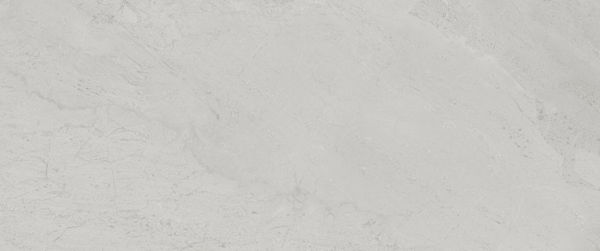 Picture of Camden Light Grey Polished Tile 25x60 cm