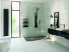 Picture of Carrara Grey Décor Polished Tile 25x60 cm
