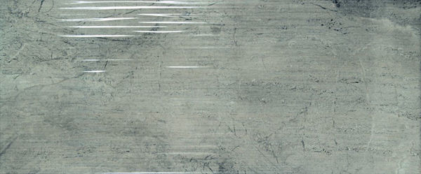 Picture of Camden Grey Décor Polished Tile 25x60 cm