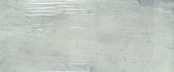 Picture of Camden Light Grey Décor Polished Tile 25x60 cm
