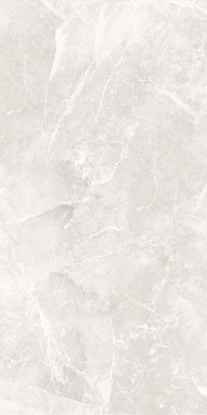 Picture of Armany Ivory Polished Tile 60x120 cm