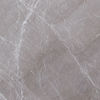 Picture of Stonela Grey Polished Tile 60x60 cm