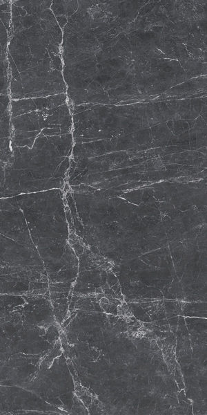 Picture of Terre Black Polished Tile 60x120 cm
