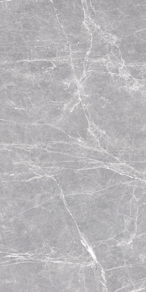 Picture of Terre Grey Polished Tile 60x120 cm