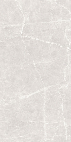 Picture of Terre White Polished Tile 60x120 cm