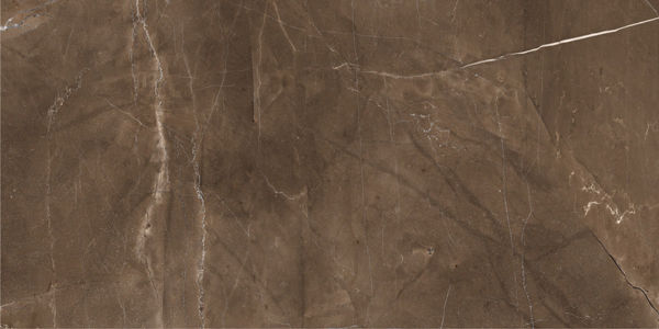 Picture of Pulpis Mocha Polished Tile 60x120 cm