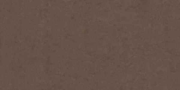 Picture of Lounge Brown Polished Tile 30x60 cm