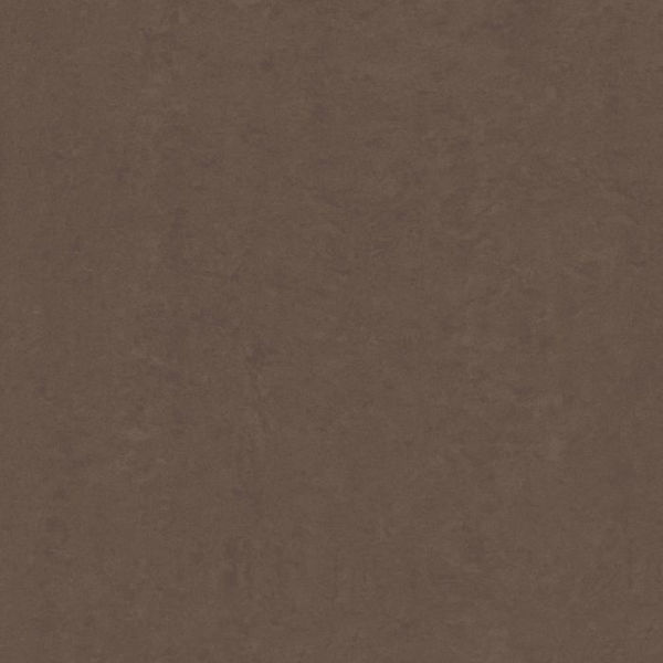 Picture of Lounge Brown Polished Tile 60x60 cm